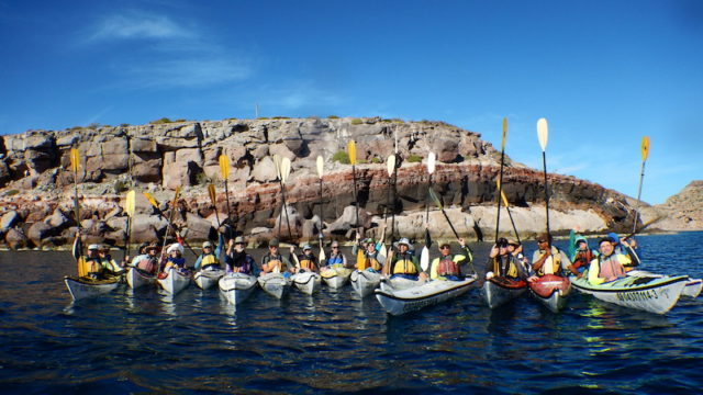 a group shot of everyone in kayaks with paddles raised